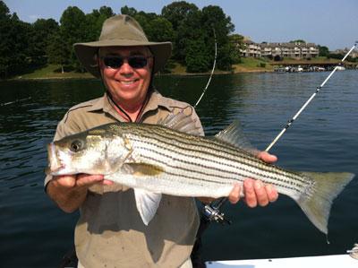 smith lake fishing guide nsw