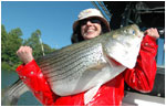 Smith Mountain Lake Striper Fishing