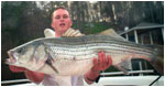 Smith Mountain Lake Striper Bass Fishing