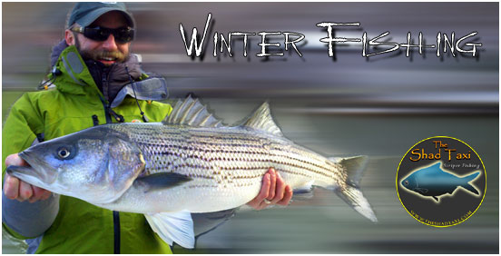 The Original Smith Mountain Lake Striper Fishing Guide and Charter