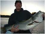 Smith Mountain Lake Stripers