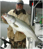 Smith Mountain Lake Striper Fishing Reports
