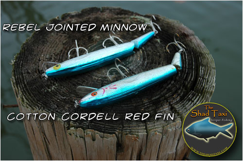 Rebel Jointed Minnow and Cotton Cordell Red Fin